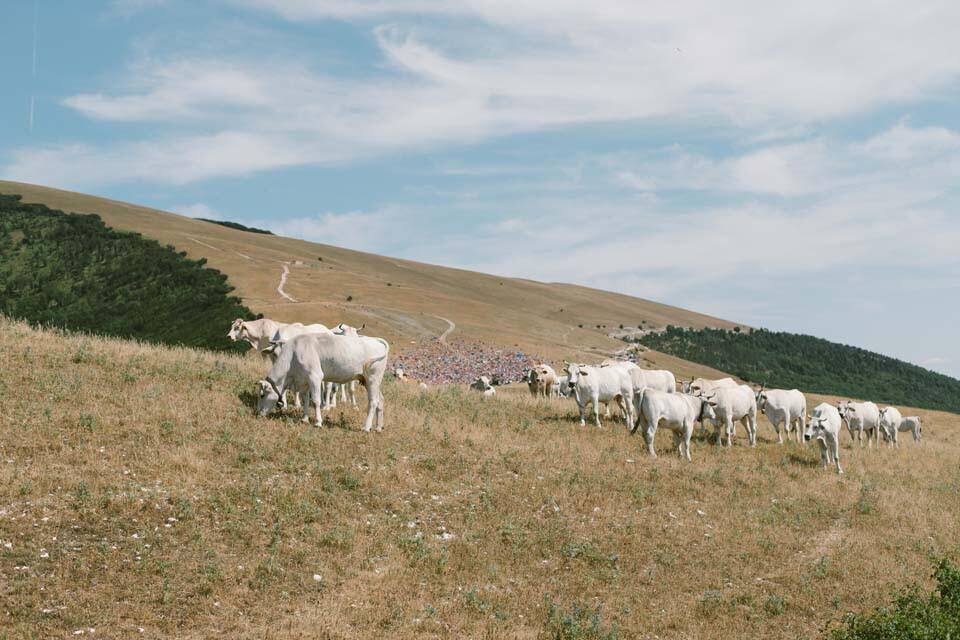 MARCO MENGONI - FUORI ATLANTICO TOUR (Monte Cucco - Perugia)